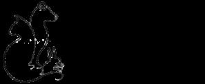 Centro Medico Veterinario Logo